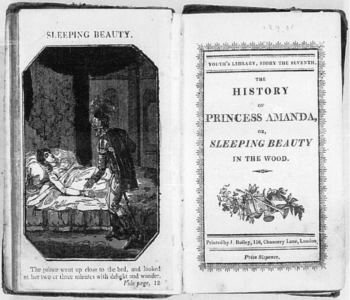 the sleeping beauty in the wood charles perrault analysis essay